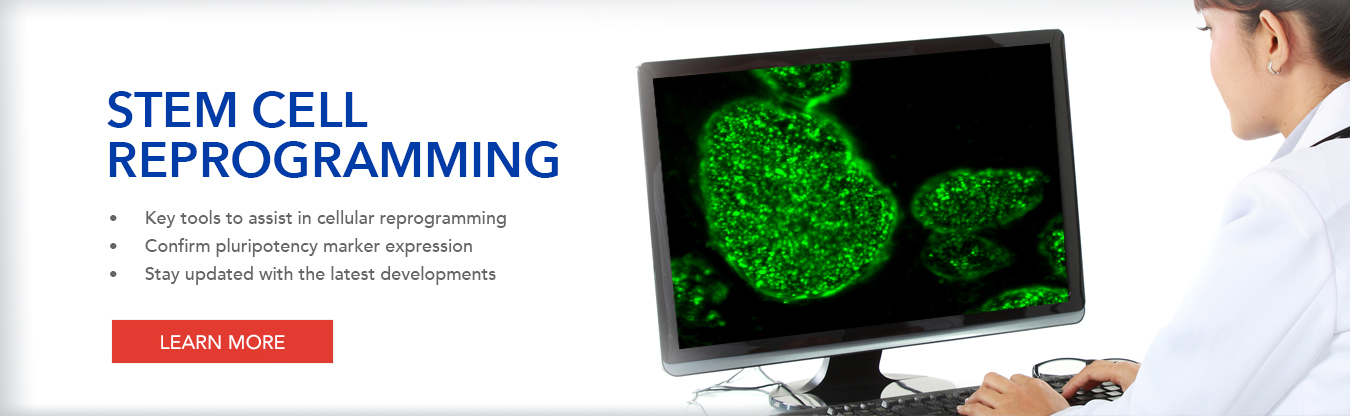 Stem Cell Reprogramming Tools